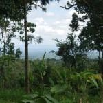 IMGP3714 - landschap