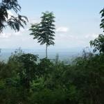 IMGP3729 - mooi landschap